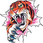 TattooGirlsRule Angry Tiger Tearing Out Temporary Tattoo (#DB552)