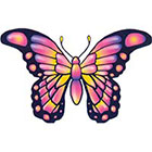 TattooGirlsRule Large Pink Butterfly Temporary Tattoo (#TH525)