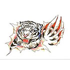 TattooGirlsRule White Tiger Tearing Out Temporary Tattoo (#BC518)