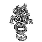 TattooGirlsRule Fancy Chinese Dragon Temporary Tattoo (#BC570)