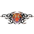 TattooGirlsRule Wide Tiger Design Temporary Tattoo (#BR558B)