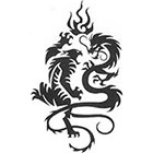 TattooGirlsRule Tiger and Dragon Fighting Temporary Tattoo (#EG518)