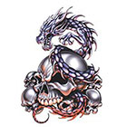 TattooGirlsRule Dragon Guarding Skulls Temporary Tattoo (#EG543)