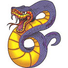 TattooGirlsRule Snake Ready to Strike Temporary Tattoo (#VS510)