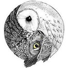 WildLifeDream Owls love - Temporary tattoo