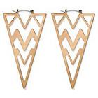 Natasha Accessories Large Triangular Earring - Gold (3