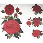 Amazon.com GGSELL GGSELL fashion latest design extra large tattoo for back red roses temporary tattoo sticker